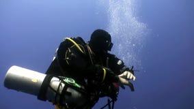 Subaqueo che nuota underwater profondo in Mar Rosso archivi video