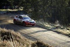 Subaru Impreza na reunião GB 2008 de Wales imagem de stock
