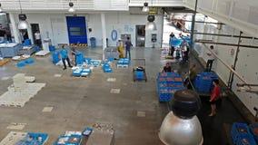 Subasta de pescado Blanes, España Envases en transportador almacen de video