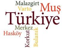 Subdivisiones turcas de Mus de la ciudad en nubes de la palabra stock de ilustración