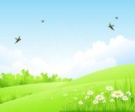 Säubern Sie erstaunliche Landschaft des Frühlinges Auch im corel abgehobenen Betrag Lizenzfreies Stockfoto