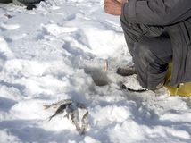 Subglacial fishing in the winter Royalty Free Stock Photo