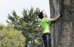 Subir el árbol Fotografía de archivo libre de regalías