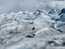 Subir el glaciar Foto de archivo libre de regalías