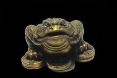 Subject photo. The mascot of Feng Shui. Spell money toad on money, photo on black background royalty free stock image