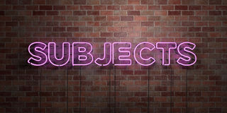 SUBJECTS - fluorescent Neon tube Sign on brickwork - Front view - 3D rendered royalty free stock picture Stock Images