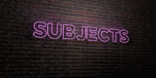 SUBJECTS -Realistic Neon Sign on Brick Wall background - 3D rendered royalty free stock image Stock Photos