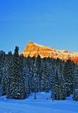 Sublettepiek op Togwotee-Pas Wyoming stock afbeeldingen
