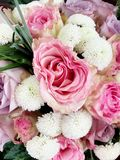 Sublime bouquet Royalty Free Stock Photo