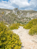 Sublime point viewpoint in France Royalty Free Stock Photography