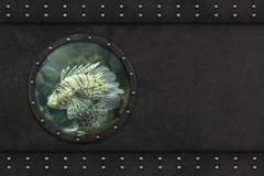 Submarine armoured window Stock Photo
