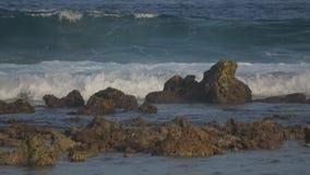 Submarine reefs, tides. Indian Ocean video. Horizontal stock video footage