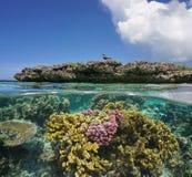 Submarino de los corales e islote del filón con un ave marina Imagen de archivo