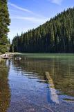 Submerged Log at Devil's Lake Royalty Free Stock Photography