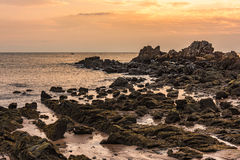 Submerged rock at coastline in the golden hour (sunset). Stock Photos