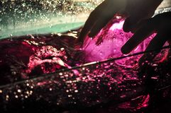 Submerging a water bottle with hands in the pink water royalty free stock photos