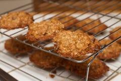 Submete folhas do chocolate Chip Cookie Rack da farinha de aveia fotos de stock