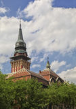Subotica town hall Stock Image