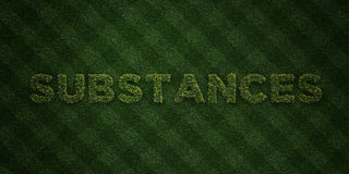 SUBSTANCES - fresh Grass letters with flowers and dandelions - 3D rendered royalty free stock image Royalty Free Stock Images