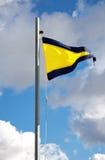 Substitua a primeira bandeira Foto de Stock
