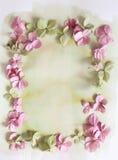 Subtelny artystyczny kwiecisty backgrodund z hortensia kwiatami zdjęcie royalty free