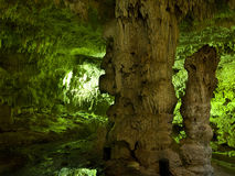 Subterranean cenote i Mexico Royaltyfria Foton