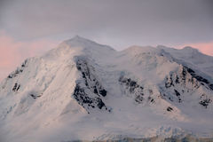 Subtle alpenglow. Lights snowy mountain,Wilhelmina bayAntarctica Royalty Free Stock Images