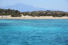 Subtropen - sandiger Strand lizenzfreies stockfoto