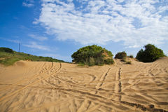 Subtropical Beach dunes. Beach dunes used as a 4x4 trail in Mozambique with a dramatic blue sky (polarised Stock Photography