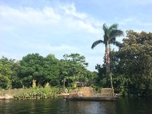 A Subtropical Dream. Nice sunshine, typical subtropical plants and and glorious river. Those make me feel in a dream royalty free stock photos
