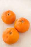 Subtropisch Fruit Royalty-vrije Stock Fotografie