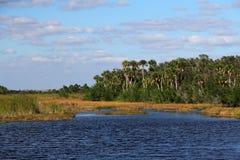 Subtropische Sumpfgebiete Landcape Lizenzfreies Stockfoto