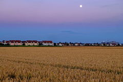 Suburban area at wheat field by full moon. Residential area with a wheat field in the foreground and a full moon shining in the sky. Night scenery in Augsburg Royalty Free Stock Image