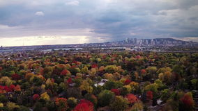 Suburban Autumn View of Montreal and beautiful Trees stock video