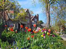 Suburban gardens Stock Image