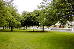 Suburban park space. Grass and trees surrounded by houses Royalty Free Stock Photography