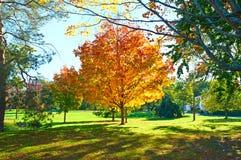 Suburban neighborhood in autumn Royalty Free Stock Images