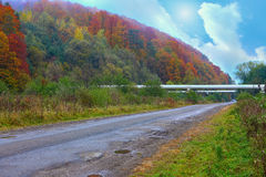 Suburban road and pipeline in the autumn forest Stock Image