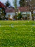 Suburban soap bubbles Stock Images