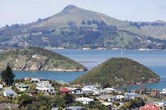 Suburbio de la ciudad de Dunedin Imagen de archivo libre de regalías