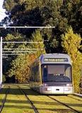 Subwaay Untergrund und Bäume der Metros Lizenzfreies Stockbild