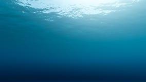 Subwater Stockbilder