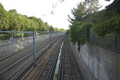 Subway tracks. Industrial train tracks with overhanging plants and trees Royalty Free Stock Photos