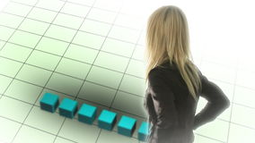 Succcessll Business Person. Stock Video Footage of a Succcessful Business Person stock video footage