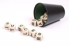 Succes in the game Royalty Free Stock Photo