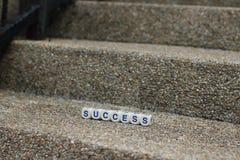 Succes op de collectieve ladder royalty-vrije stock afbeeldingen