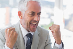 Succesful businessman cheering Stock Images