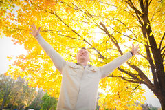 Success. A man expressing success or spirituality in the fall Royalty Free Stock Images