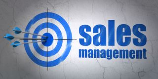 Advertising concept: target and Sales Management on wall background. Success advertising concept: arrows hitting the center of target, Blue Sales Management on Stock Photography
