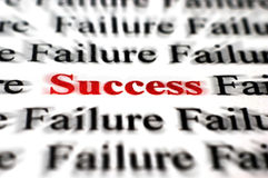 Success amongst failure Royalty Free Stock Photo